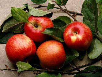 Почему нельзя есть много яблок?